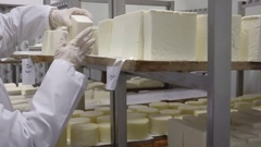 Keeping rolls of homemade cheese in cold storage Stock Footage