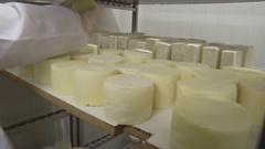 Warehouse of homemade cheese Stock Footage