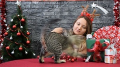 Playful cats and a girl in New Year's ambiance Stock Footage