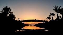 Playa de las Americas, Tenerife, bridge in sunset Stock Footage
