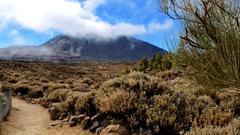Teide, hiking path, Tenerife Stock Footage