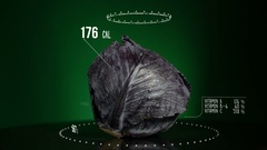 Infographic of Red Cabbage with vitamins, microelements minerals. Energy Stock Footage