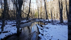 Small river with snow in Biogradska Gora Stock Footage