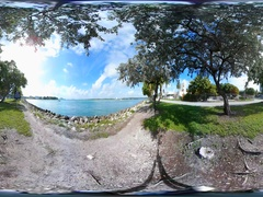 360vr video scenic park with bay views Stock Footage