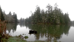 Chehalis River winter Olympic Peninsula Wa. State Stock Footage