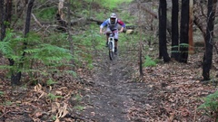 Teenage boy mountain biking in a forest. Stock Footage