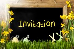 Sunny Narcissus, Easter Egg, Bunny, Text Invitation Stock Photos