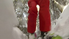 POV from front of ski of man cross-country skiing amongst the trees on a snow co Stock Footage
