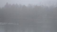 Heavy fog on lake foggy area Stock Footage