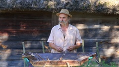 Old musician playing the national stringed musical instrument gusli , Ukraine Stock Footage