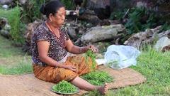 Nepali woman working in the yard . Pokhara, Nepal Stock Footage