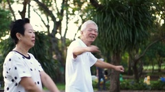 Asian senior couple dancing aerobic exercise in the park having fun together Stock Footage