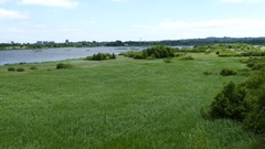 Lake and grass field in Arhus Stock Footage