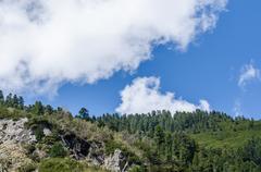 Trees mountain sky Stock Photos