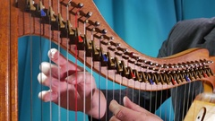 Young man plays the harp Stock Footage