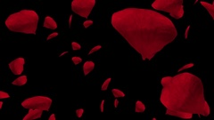 Falling red rose petals over black. Valentine slow motion HD animation Stock Footage