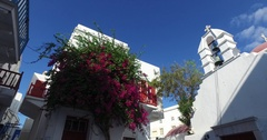 Mykonos, houses and flowers of Chora Stock Footage