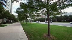 Sidewalk and street traffic. Stock Footage