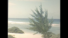 Vintage 16mm film, 1956, Haiti Port au Prince resort, beach front Stock Footage