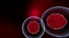 Abstract 3d slow motion animation of human cells or microbes. Stock Footage