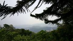 View over oldtown Taipei from Elephant mounatin Stock Footage