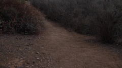 A young woman trail running. Stock Footage