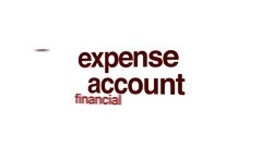 Expense account animated word cloud. Stock Footage