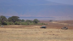 CLOSE UP: Safari jeeps game driving through African savanna in Ngorongoro crater Stock Footage