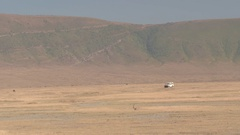 CLOSE UP: Safari jeep game driving tourists in African savannah in Ngorongoro Stock Footage