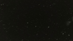 Snowflakes are dancing against black night sky background. Stock Footage