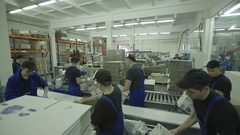 Workers In Warehouse Preparing Goods For Dispatch Stock Footage