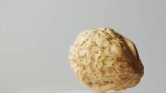 Macro one walnut isolated on white Stock Footage