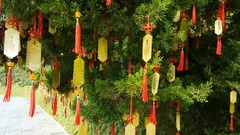 Taiwanese wishing tree with colorful pendants Stock Footage