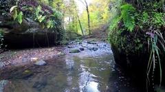 """Little river in """"Little Switzerland"""" Stock Footage"""