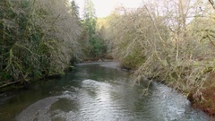 Satsop river in winter Olympic Peninsula Wa. State Stock Footage