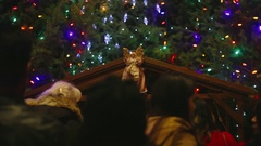 Christmas Manger - Nativity Scene, Holy Mary Cathedral, Vancouver Stock Footage