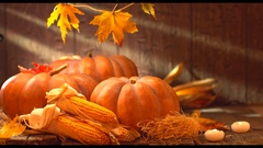 Thanksgiving Day. Pumpkins over wooden background. Autumn festival concept, harv Stock Footage