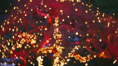 Red Lighting Tree - Butchart Gardens Stock Footage