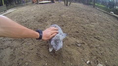 Man's hand petting fluffy grey rabbit in zoo. Close up Gopro first person view Stock Footage