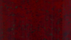 Dark particles inside of red fluid Stock Footage