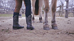 Person in cowboy boots stand next to horse 4K Stock Footage