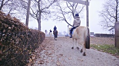 Group horse riding in line towards the road 4K Stock Footage