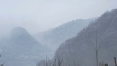 Freezed Forests and Mountains Stock Footage