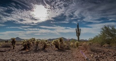 UHD 4k Motion time lapse of the sun through the clouds in the desert with cactus Stock Footage