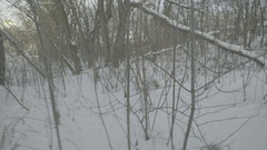 Surviving in the woods in winter. POV. Stock Footage