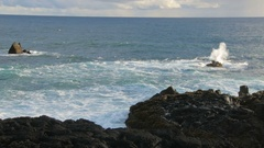 Marine scape of Atlantic ocean and lava coast in Iceland in sunny day Stock Footage