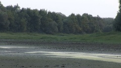 Almost drained marshland, zoom out Stock Footage