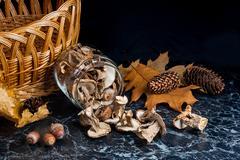 Dry wild mushrooms on black marble background. Stock Photos