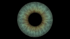 Closeup view of Human Eye Iris (Light Green) Stock Footage