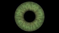 Closeup view of Human Eye Iris (Dark Green) Stock Footage